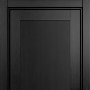 Межкомнатная дверь Status Estetica 811 дуб черный