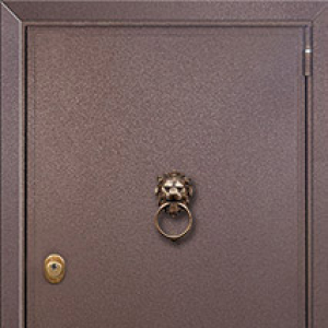 Входная дверь СТАЛ 100 Сейф с порошковой покраской